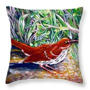 Brown Thrasher In Sunlight Throw Pillow