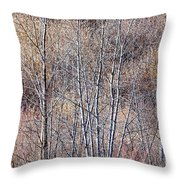 Brown Winter Forest With Bare Trees Throw Pillow