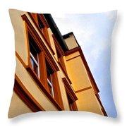 Brownwindows Throw Pillow
