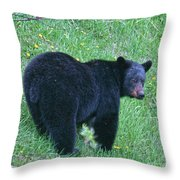 Browsing Black Bear Throw Pillow