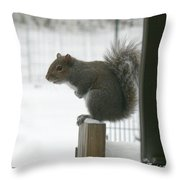 Brrrrrrrrrrrr - Featured In Comfortable Art Group Throw Pillow