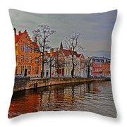 Bruggas Morning Throw Pillow