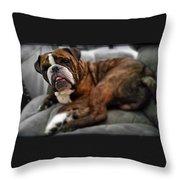 Bruiser Throw Pillow