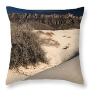 Brush In The Dunes Throw Pillow