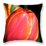 Brushstrokes By Tulip Throw Pillow