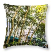 Bryant Park Midtown New York Usa Throw Pillow
