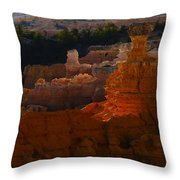 Bryce 41 Throw Pillow