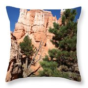 Bryce Canyon Fins Throw Pillow