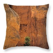 Bryce Canyon National Park Hoodo Monoliths Sunset From Sunset Po Throw Pillow