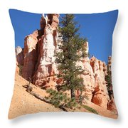Bryce Canyon Red Fins Throw Pillow