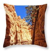 Bryce Canyon Trail Tree Throw Pillow