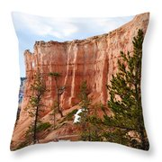 Bryce Curved Formation Wall Throw Pillow