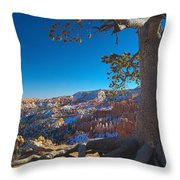 Bryce Pine Throw Pillow