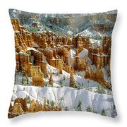 Bryce Winter Morning Throw Pillow