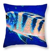 Bubbles - Fish Art By Sharon Cummings Throw Pillow