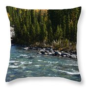 Bubbling River Throw Pillow
