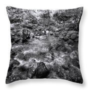 Bubbling Water Brook In The Smokies Throw Pillow