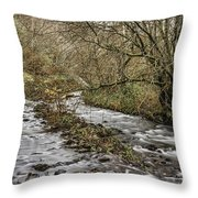 Bubbling Water Throw Pillow