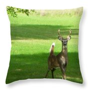 Buck And Doe Throw Pillow