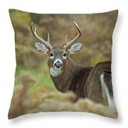 Buck Fever Throw Pillow