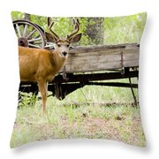 Buck Wagon Throw Pillow