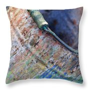 Bucket Of Colors Throw Pillow