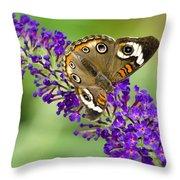 Buckeye Butterfly On Purple Flowers Throw Pillow