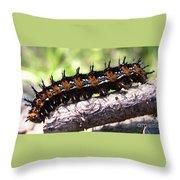 Buckeye Caterpillar 2 Throw Pillow