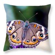 Buckeye II Throw Pillow
