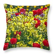 Buckingham Beauty Throw Pillow