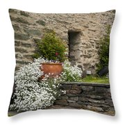 Buckingham Street In Arrowtown Throw Pillow