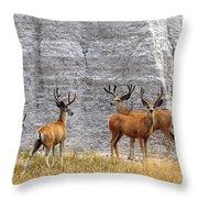 Bucks Abound Throw Pillow