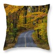 Bucks County Road In Autumn Throw Pillow