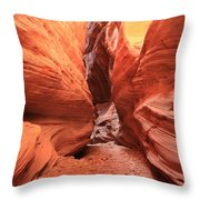 Buckskin Bulge Throw Pillow