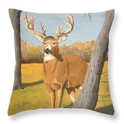 Bucky The Deer Throw Pillow