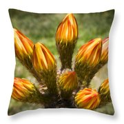 Bud Bouquet Throw Pillow