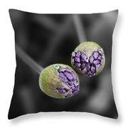 Budding Alliums Throw Pillow