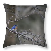 Budding Bluebird Throw Pillow