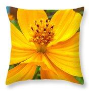 Budding Bouquet Throw Pillow