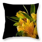 Budding Flowers Throw Pillow