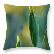 Budding Iris Throw Pillow