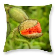 Budding Poppy Throw Pillow