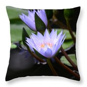 Budding Purple Water Lilies Throw Pillow