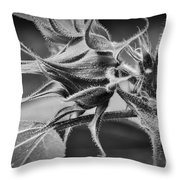 Budding Sunflower In Black And White Throw Pillow