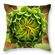 Budding Sunflower Throw Pillow