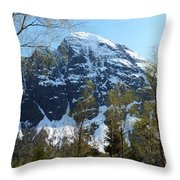 Buds And Glaciers  Throw Pillow