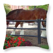 Budweiser Clydesdale Throw Pillow
