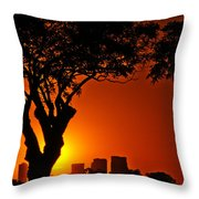Buenos Aires At Sunset Throw Pillow