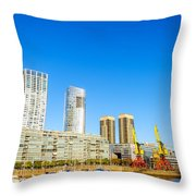 Buenos Aires Waterfront Throw Pillow
