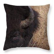 Buffalo   #0921 Throw Pillow